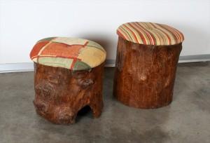 שרפרף משאריות גזע עץ עתיק
