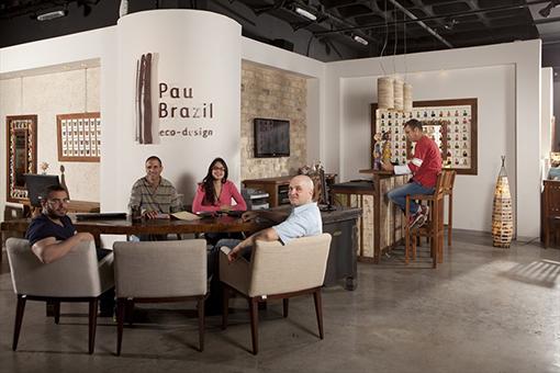 פאו ברזיל - גלריה עם קונספט