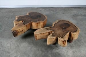 שולחן סלוני מגזע Guajuvira